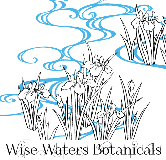 WiseWaters-logo2016